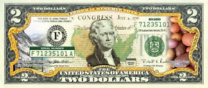 IDAHO State/Park COLORIZED Legal Tender U.S. $2 Bill w/Security Features