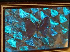Morpho Didius Butterfly Wings Inlay Wood Lock Box  Made in Brazil = Rare Find