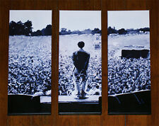 Oasis - Liam Gallagher - LARGE 3 x Piece - Slane Castle - Limited Edition Canvas