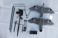 PIGEON MAGNET ROTARY + TWO FLOCKED PIGEON DECOYS + 12v BATTERY Hunting set Shoot