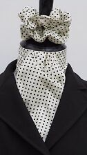 Ready Tied Cream & Navy Blue Pin dot Cotton Dressage Riding Stock & Scrunchie -