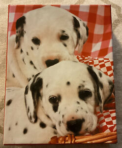 American Greeting Dalmatian Puppy Dog Invitations 12 Letters & Envelopes