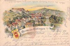 Sehr seltene Litho AK Gruss aus Tübingen 1894@Wappen Schloss Neckar Totalansicht