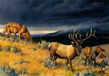 Farewell to Fall II Lmt Ed Canvas by Nancy Glazier