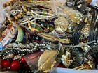 Huge lot #2 ESTATE JEWELRY vintage & modern 11 lbs unsearched repurpose, wear