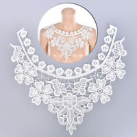 Embroidered Floral Lace Neckline Neck Collar Trim Clothes Sewing Patch L432 JR