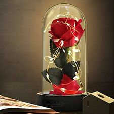Beauty and The Beast Rose Enchanted Silk Rose Lamp That Lasts Forever with Led