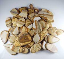 Natural Picture Jasper Mix Size & Shape Cabochon Loose Gemstone Wholesale Lot