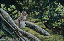 Andrew Kiss Original Painting Squirrel in Forest Canadian Listed Artist Wildlife