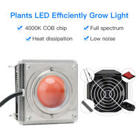 COB Full Spectrum LED Grow Light Growing Lamp for Flower Hydroponic Greenhouse