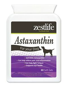 Zestlife Astaxanthin for Dogs 60 soft gels  immune system, joints, muscles, eyes