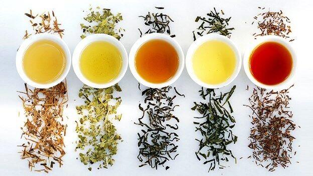tealifeau