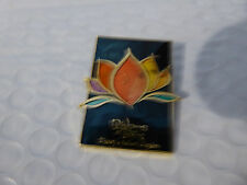 Disney Trading Pins 120773 Rivers of Light Stained Glass