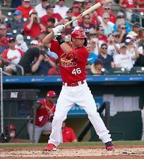 Paul Goldschmidt  St. Louis Cardinals UNSIGNED 8x10 Photo