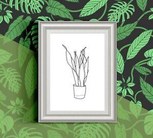 Sansevieria snake plant minimal house plants illustration glossy 13x18 cm print