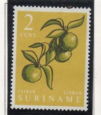 Suriname 1961 Early Issue Fine Mint Hinged 2c. 168979