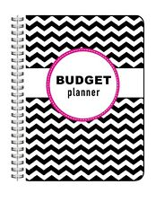 2018 - 2019 Budget Planner, Bill Organizer, Monthly, Personal Finances, Calendar