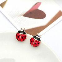 Cute Insert Earrings Exquisite Paint Stud Earrings Red Oil Ladybug Ear Studs LJ