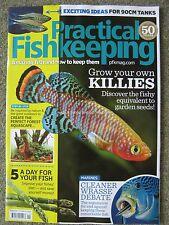 Practical Fishkeeping September 2017 Wrasse Flyer Cichlid Zebra Danio Killifish