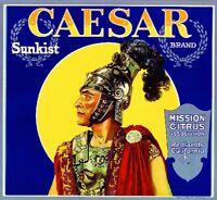 Redlands Julius Caesar Rome Roman Orange Citrus Fruit Crate Label Art Print