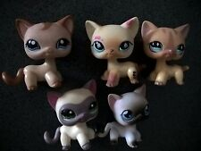 lot de 5 LITTLEST PETSHOP PET SHOP LPS chat europeen 1116 886 816 1024 05