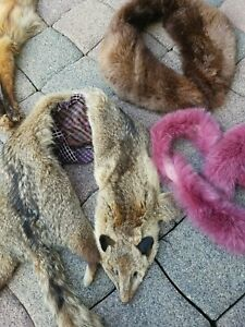 3x Fell verschiedene Pelze Echtfell Fuchs Schulter-Stola Vintage Pelzkragen