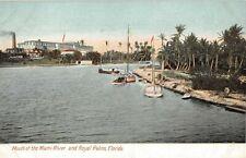 c.1908 Royal Palm Hotel Mouth of Miami River Brickells Island Miami FL post card