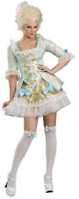 Mary Antoinette Lady Versailles Adult Costume Size 8-10