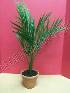 Pottery Barn Faux Potted Fishtail Palm Tree Leaves Decor Tropical Beach Ocean