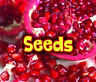 All About Seeds (Acorn: All About Plants) by Claire Throp.