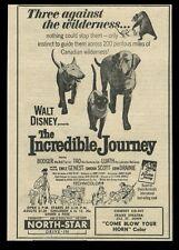 1963 The Incredible Journey Walt Disney cat dog movie vintage print ad