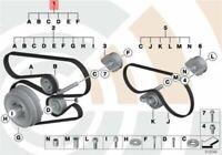 BMW E46 E53 E60 Water Pump Alternator Drive Belts Set 2339100 11282339100 NEW
