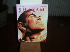 Shazam ! Lutte pour l'espoir de Dini comme neuf