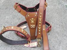 STAFFORDSHIRE BULL HARNESS,LEAD,&COLLAR,SET, 3 Feather, in Brown LEATHER