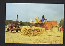 SCENE AGRICOLE / AGRICULTEUR au travail & MOISSONNEUSE BATTEUSE au Dépiquage