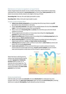 AQA A-Level A* Year 2 Biology Revision Notes