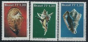 BRAZIL - 1977 Sea Snails Set of 3 stamps MNH
