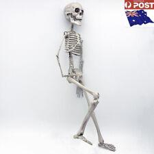 Hanging Skeleton 76cm Full Body Skull Skeleton Halloween Party Decoration Props