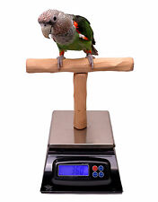 Parrot Scale - Parrot Wizard NU Perch Parrot Training Scale for Weighing Birds