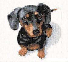 Dachshund Dog Cross Stitch ChartFree Post
