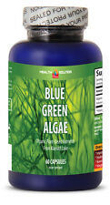 Spirulina Organic Wheat Grass - Klamath BLUE GREEN ALGAE 500mg (1 Bot 60 Caps)