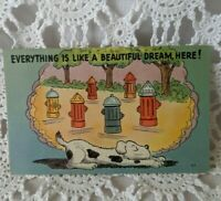 Post Card Vintage Comical Humor Funny Posted 1948