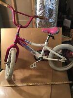 "Raleigh Girls Li Honey Bicycle 14"" Rims, 16"" Wheels in  Good Working Condition"