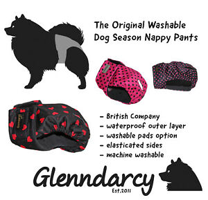 Glenndarcy Female Dog in Season Nappy Pants I Size XS - Medium Long