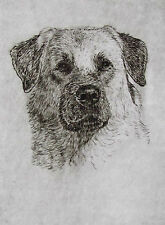 Geoffrey Lasko - Anatolian Shepherd Dog - Listed Artist Etching -S&N - Free Ship