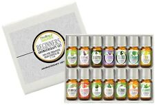 Healing Solutions Beginners Aromatherapy Essential Oil Kit (Pack of 14/10ml)