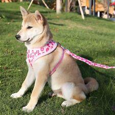 Adjustable Dog Vest Harness and Leash Collar Set Leopard Safe Harness Walk Lead