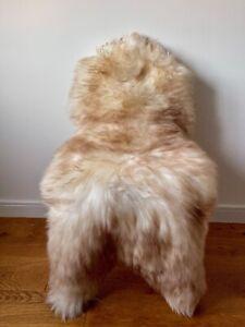 XXL Large Genuine Merino Sheepskin Sheep Rug Ivory/Cream/Ginger Brown Tips NEW