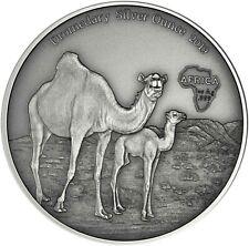 Kamerun 1000 Francs 2019 Dromedar Silver Ounce Antique Finish Silbermünze
