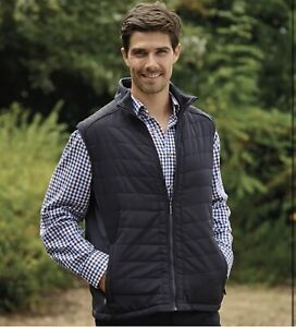 Champion XL Mens Evesham Blue Padded quilted body warmer gilet lightweight